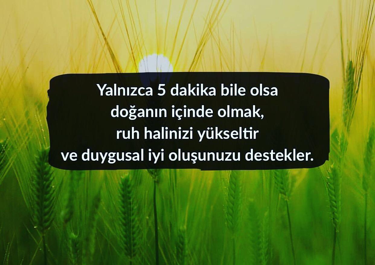 Konya Psikolog - EMDR